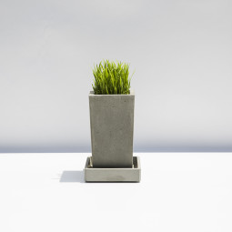 Doma s kouskem betonu